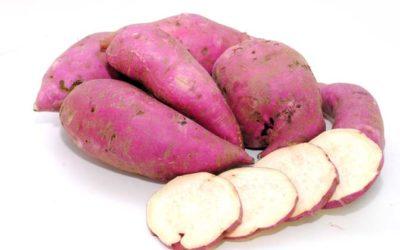 Benefícios da batata doce para saúde